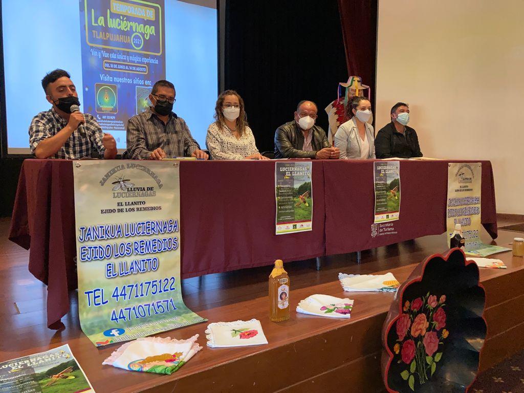 Se reabrirán santuarios de luciérnagas en Tlalpujahua