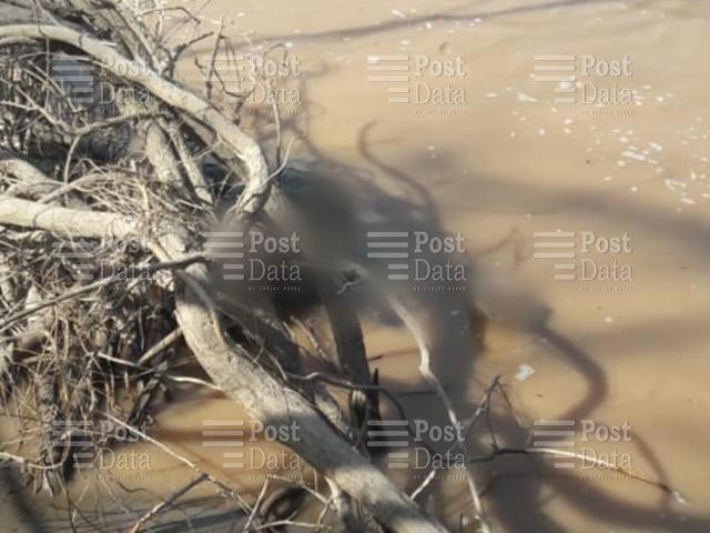 Muere joven ahogado en el río de Carácuaro